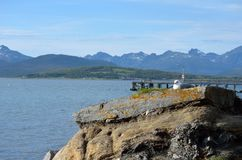 Gaviota hermosa que descansa sobre el canto rodado de la costa en sol que se calienta Imagenes de archivo