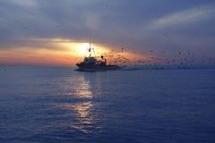Gaviota profesional del barco de pesca en puesta del sol Imagen de archivo