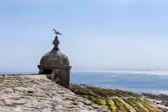 Gaviota que descansa sobre una pequeña torre por la costa Fotografía de archivo