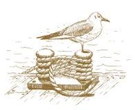 Gaviota que se sienta en un bolardo dibujado a mano Imagen de archivo libre de regalías