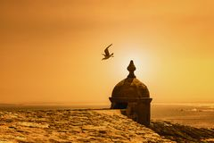Gaviota que vuela de una pequeña torre por la costa en la puesta del sol Imagen de archivo