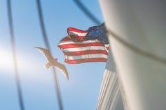 Gaviota y bandera sobre goleta Fotos de archivo