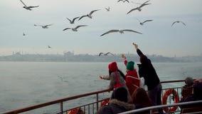 Gaviotas de alimentación de la gente no identificada con las galletas de un transbordador, Estambul, Turquía metrajes