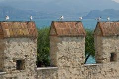 Gaviotas de mar sobre pináculos del castillo Imagen de archivo