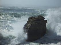 Gaviotas en la roca como caída de las ondas Imagen de archivo libre de regalías