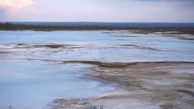 Gaviotas en un lago azul almacen de video