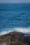 Gaviotas en una roca en el golpe de ondas Fotos de archivo