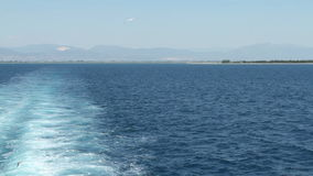 Gaviotas que vuelan sobre el mar - vídeo común almacen de metraje de vídeo