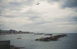 Gaviotas que vuelan sobre una playa rocosa Foto de archivo
