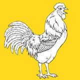 Gaworzyć kogut kolorystykę na kolorze żółtym Obraz Stock