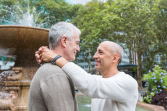 Gay Couple in New York Stock Images