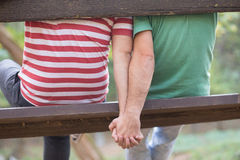 Gay couple in the park Royalty Free Stock Photo