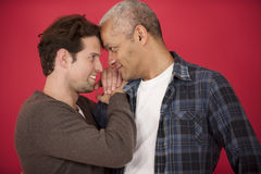 Gay couple on red background stock photos