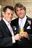 Gay Couple at Wedding Reception. Handsome gay couple give champagne toast at their wedding reception Royalty Free Stock Photography
