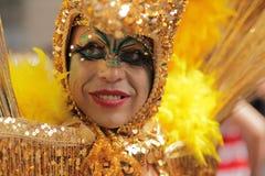 Gay en oro Imagen de archivo libre de regalías
