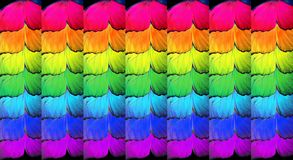 Gay flag. Colors of rainbow. Pattern of multicolored butterflies morpho,. Texture background royalty free stock images