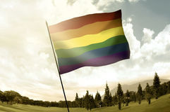 Gay flag on the pole in hill Royalty Free Stock Image