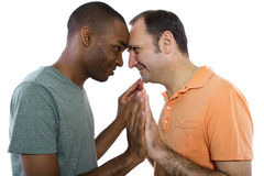 Gay Lovers Royalty Free Stock Image
