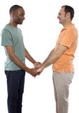 Gay Lovers Royalty Free Stock Images
