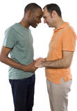 Gay Lovers Stock Images