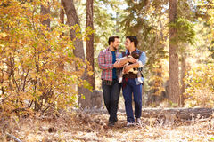 Gay Male Couple With Baby Walking Through Fall Woodland Stock Photos