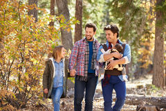 Gay Male Couple With Children Walking Through Fall Woodland Royalty Free Stock Photo