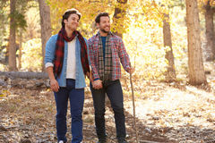 Gay Male Couple Walking Through Fall Woodland Together Stock Photo