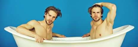 Gay men sitting naked torso in white bath. Gay man or unshaven macho twins with stylish hair sitting naked, sexy muscular torso in white bath tub on blue royalty free stock image
