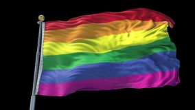 Gay Pride animated flag pack in 3D and green screen