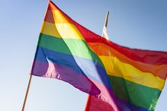 Gay Pride Flag Immagine Stock