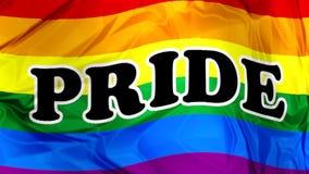 Gay Pride Flag waving stock footage