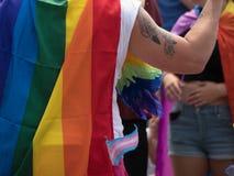 Gay Pride gai de plume de tatouage de bras de drapeau d'arc-en-ciel Images stock