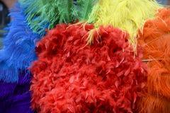 Gay Pride Rainbow Feathers Close-Up Stock Photos