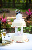 Gay Wedding Cake in Garden. Wedding cake and champagne set up on a table in the garden.  Two grooms are on top of the cake Royalty Free Stock Photo