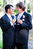 Gay Wedding Couple - Champagne Toast Stock Photos