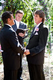 Gay Wedding in the Park Stock Photo