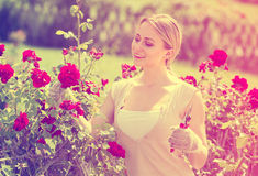 Gay young woman working with bush roses with horticultural tools. In garden on sunny day Royalty Free Stock Photos