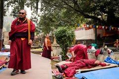 GAYA, INDIA - DECEMBER 3, 2016: De boeddhistische monniken bidden en mediteren in Bodh Gaya Stupa Royalty-vrije Stock Foto's