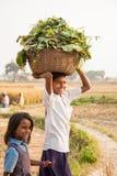 Gaya, la India, el 25 de noviembre: Foto de archivo