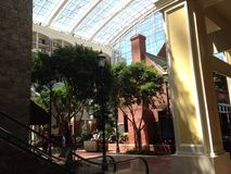 Gaylord National Harbor Atrium. This shows the trees and builds in the atrium Royalty Free Stock Photos
