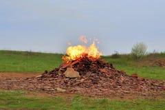 Gaz de combustion dans la nature Photographie stock