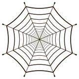 Gaze de toile d'araignée de toile d'araignée Images libres de droits