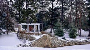 Gazebo παγοδών στο πάρκο μεταξύ των δέντρων πεύκων το χειμώνα Στοκ Φωτογραφία