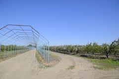 Gazebo χάλυβα για τα σταφύλια πέρα από το δρόμο στον οπωρώνα μήλων Κήπος φρούτων Στοκ Φωτογραφία