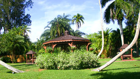 Gazebo. In garden in Sarasota, Florida, surrounded by tropical greenery and numerous types of palm trees stock image