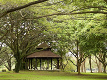 Gazebo. Nestled in the shade provided by numerous and huge branching trees in a public park stock photography