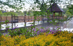 Gazebo auf dem nebeligen See umgeben durch Frühlings-Blumen stockbilder