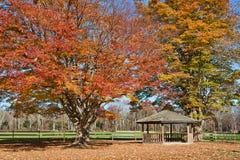 Gazebo in Autumn Royalty Free Stock Images