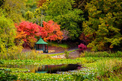 Gazebo in the autumn park by the pond Stock Photo