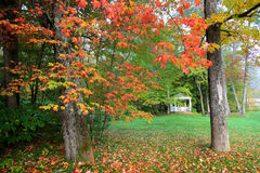 Gazebo in autumn trees. Gazebo in the park with fall foliage Royalty Free Stock Image